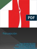 ppb, coca