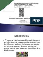 diapositivas mogarafias