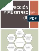 INSPECCIÓN Y MUESTREO (II)