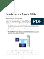 Anexo Organizacion IO