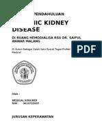 Laporan Pendahuluan Chronic Kidney Disease ( CKD )