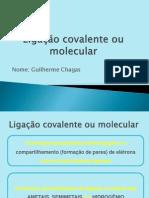 2013041_apresentacao_ligacoescovalentes_guilhermechagas