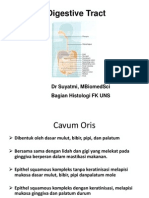 Histologi Sistem Digestivus 2013