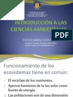 clase_11._ciclo_carbono.pdf