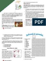 nota técnica del AÑO DE La FE