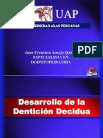 Desarrollo de La Denticion Temporal