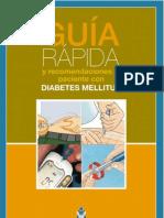 Guia Rapida e Recomendacions o Paciente Con Diabetes Mellitus