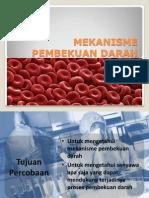 Meyvia Rifka r - 021111382 - Mekanisme Pembekuan Darah