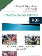Comercializacao Agricola_Khulima Pungue KPAS.pdf