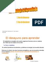 FisiologÃ-a_del_aprendozaje[1]