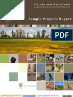 2011 ProjectReport Web