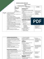 Diversificacion Curricular 2013 -1