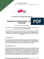 Curriculum 2008 Bachelor Bauingenieurwissenschaften Umwelt Wirtschaft