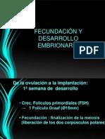 desarrolloembrionario-101011203141-phpapp02