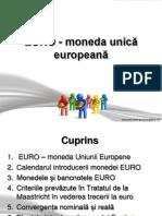 curs 6 euro