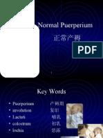 puerperium 安红敏(I)