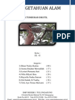 Cara Mencangkok Tumbuhan Dikotil.docx
