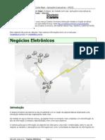 Aplicacoes Corporativas - Negócios Eletrônicos - Carlos Majer