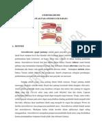 aterosklerosis makalah