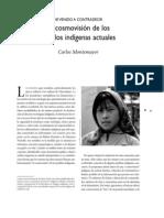 La Vision de Los Pueblos Indigenas Actuales