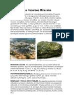 Trabajo Biología Recursos Minerales