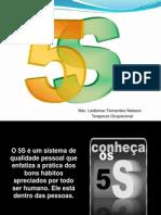 Palestra 5S - Defensoria Pública