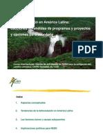 10_JSeifrt_Grazin_Deforestacion