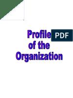 Company Grasim Profile