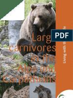 [2009]LargeCarnivores