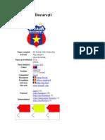 FCSteauaBucureşti