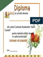 Diploma Proiect (2)