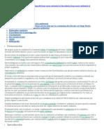 Proyecto Contaminacion Ambiental Sub-lorenza