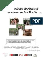PBD Oportunidades de Negocio San Martin 02[1].11.09