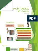 PATOLOGÍA TUMORAL DE OVARIO II