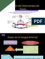 Intercambio Gaseoso (2)