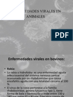 ENFERMEDADES VIRALES EN ANIMALES.ppsx