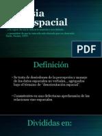 Agnosia Visoespacial