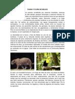Fauna y Flora de Belice