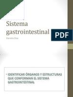 clase_13_Sistema_gastrointestinal.ppt