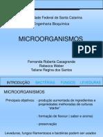 microrganismos-1207937147375096-9