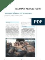 Nuliparas y Primíparas