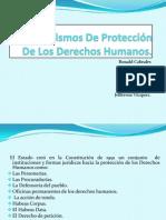 Mecanismos De Protección De Los Derechos Humanos