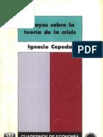15EnsayosSobreLaTeoriaDeLaCrisis