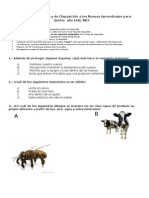 Evaluación Diagnóstica 5º EGB CN