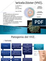 Virus Varicela-Zóster (VVZ)