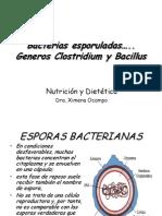 Bacterias EsporuladasNUT (1)