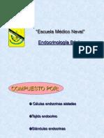 Endocrinología básica