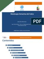 1353062349CFG_Minería,DesafíosyDesarrolloPaís_ProcesamientoMinerales_JulioDíaz.pdf
