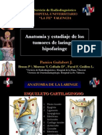 anatomiatnm.ppt