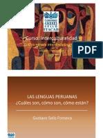 Presentacion Gustavo Solis Curso II Intercultural